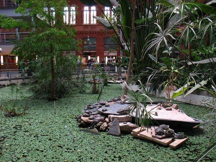 ботанический сад на вокзале аточа мадрид 4 (700x524, 203Kb)