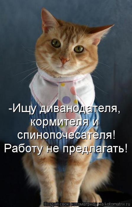 kotomatritsa_1G (447x700, 41Kb)