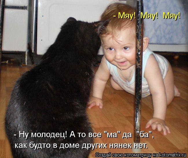 kotomatritsa_fi (650x545, 59Kb)