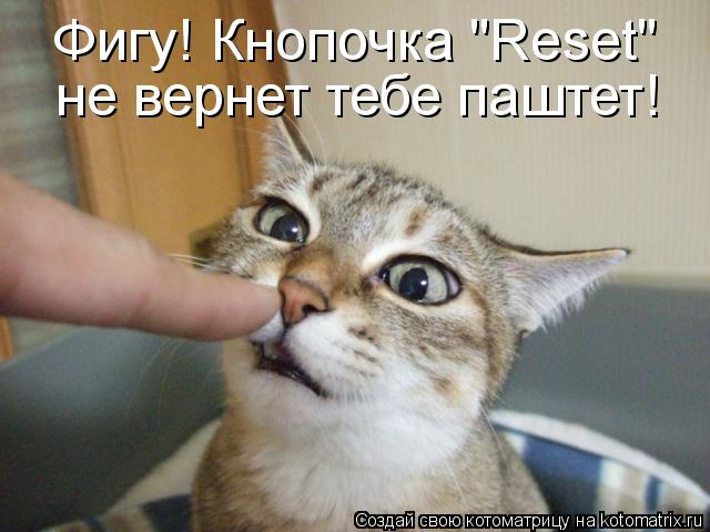 kotomatritsa_M (640x480, 44Kb)