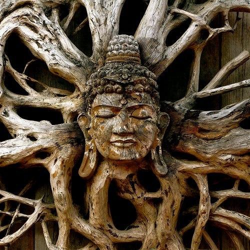 Будда в дереве (500x500, 105Kb)