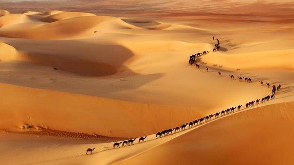 Караван в пустыне, Саудовская Аравия (604x340, 22Kb)