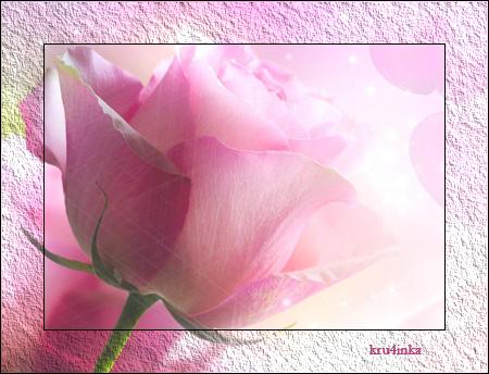 Роза (450x344, 281Kb)