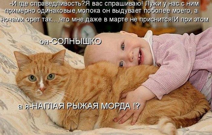 1359894849_qB4VkQUSipw (700x446, 97Kb)