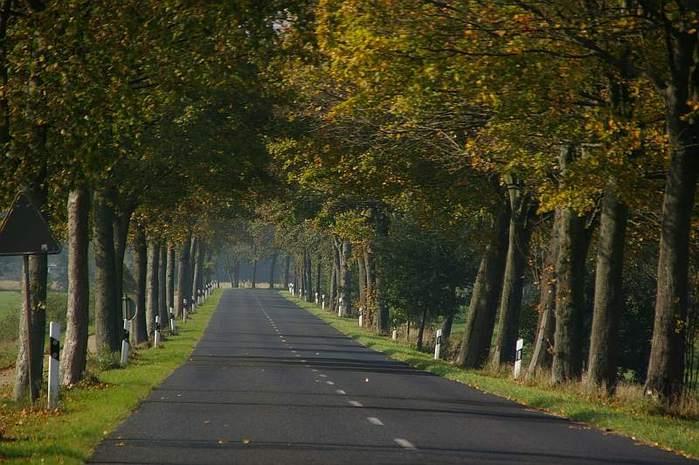 Фрисландия - часть 1. 37153