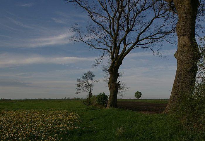 Фрисландия - часть 1. 15573