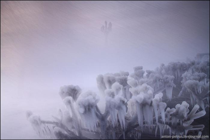 зимняя ялта фото 3 (700x466, 63Kb)