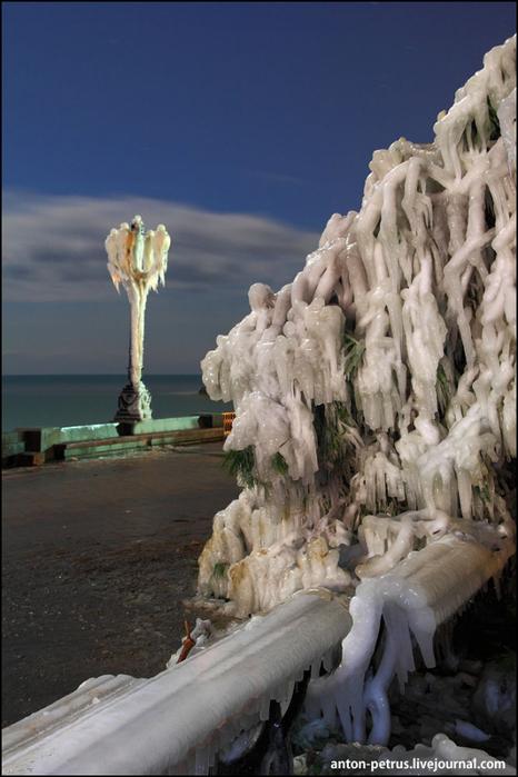 зимняя ялта фото 8 (466x700, 312Kb)