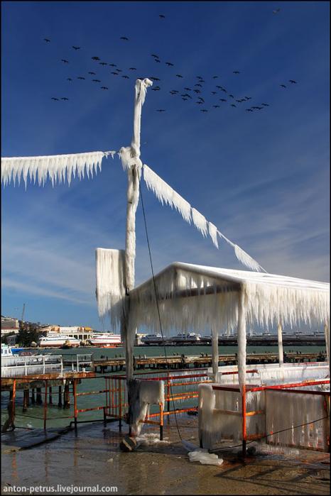 зимняя ялта фото 15 (466x700, 329Kb)