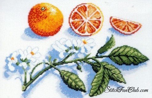 """Схема вышивки  """"Дольки апельсина """" от автора LLiaRR: 130 x 98 крестов, 50 цветов."""
