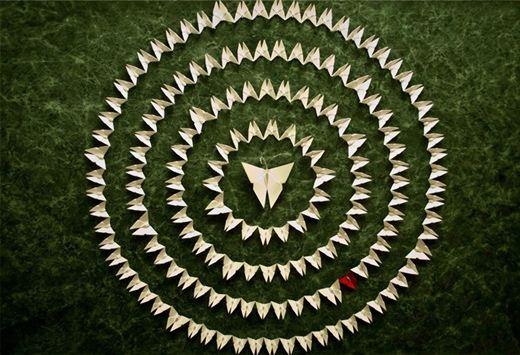 Уилл и Каро. Инсталляции из бумажный бабочек-оригами