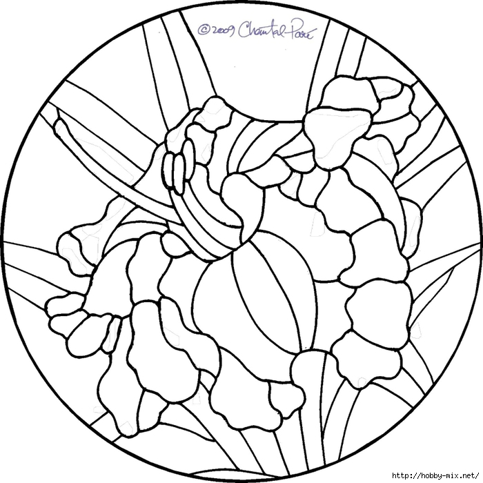 4daylily (700x700, 228Kb)