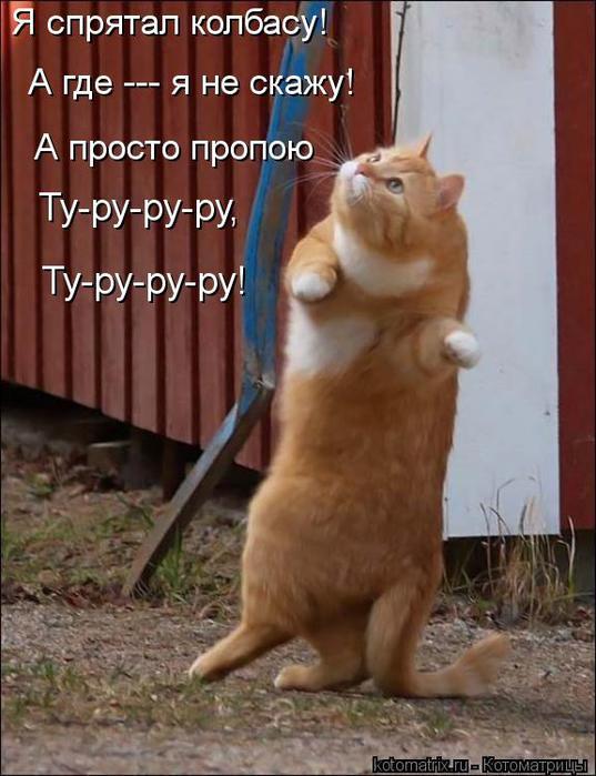 kotomatritsa_YN (537x700, 57Kb)