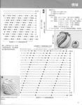 ������ 025 block origami-039-039 (546x700, 268Kb)