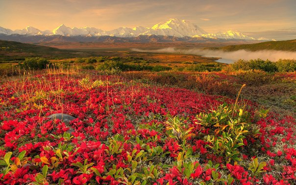 Аляска весной, США (604x377, 88Kb)