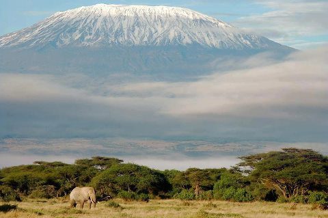 Килиманджаро (480x319, 30Kb)