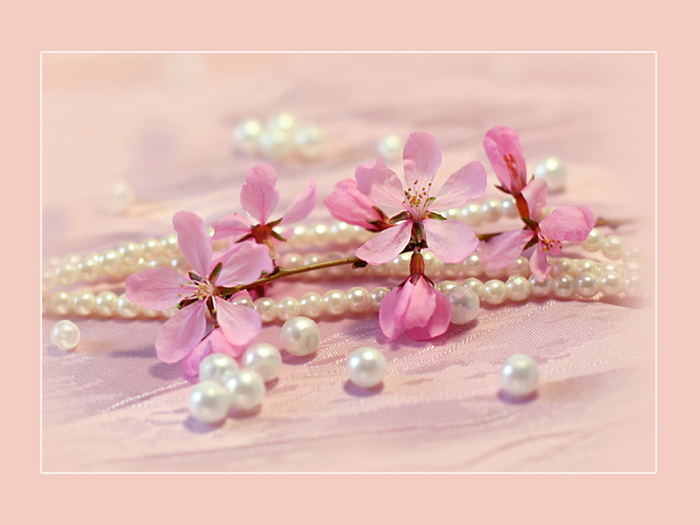 Quotes About Pearls And Friendship Best Touching Hearts Quotes About Pearls  With Pictures