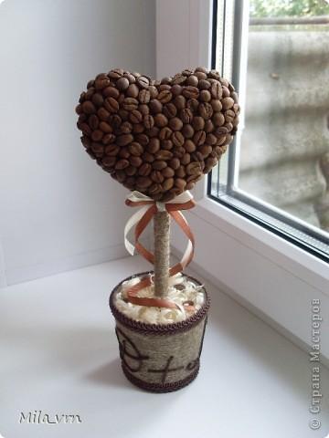кофейное деревце валентинка (94) (360x480, 37Kb)