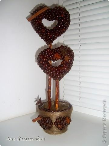 кофейное деревце валентинка (99) (360x480, 34Kb)