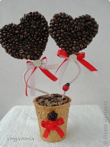кофейное деревце валентинка (118) (360x480, 46Kb)