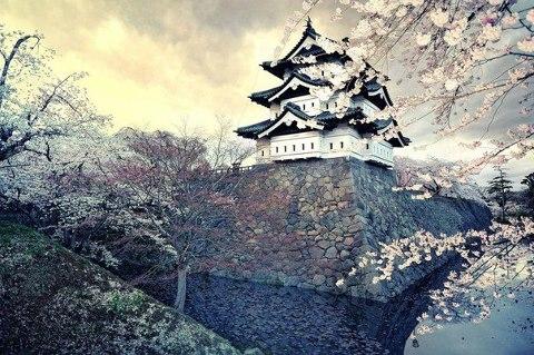 Волшебная Япония (480x319, 62Kb)
