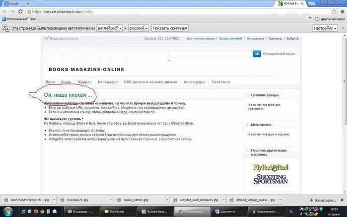 Копия Копия 97389992_large_Sneta 2 (700x437, 39Kb)