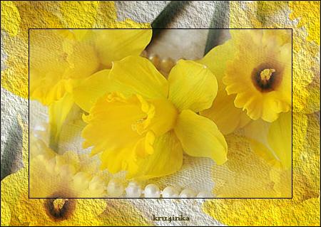 Нарцисс (450x319, 315Kb)