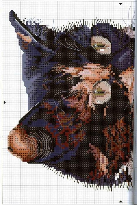 схемы вышивки(470x700, 296Kb)