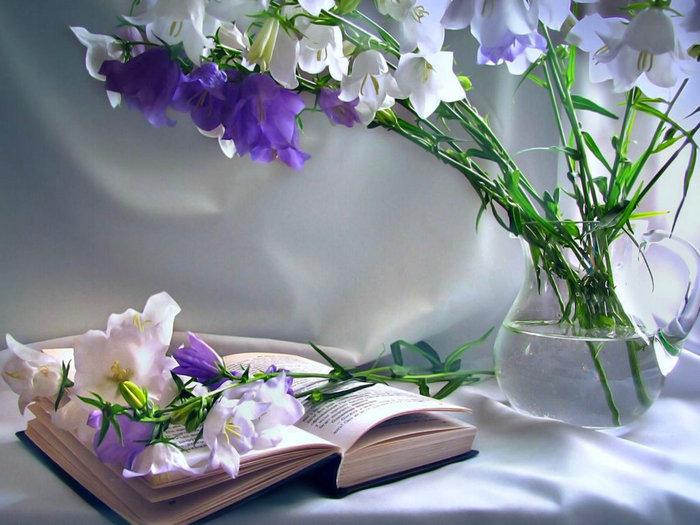 85049991_493880_books (450x325, 93Kb)