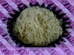 vagasa.ru спагетти/5156954_v_skovorody_spagetti (240x180, 31Kb)
