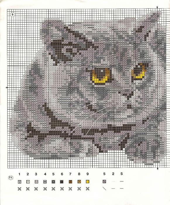 Схемы вышивки крестом котов британец