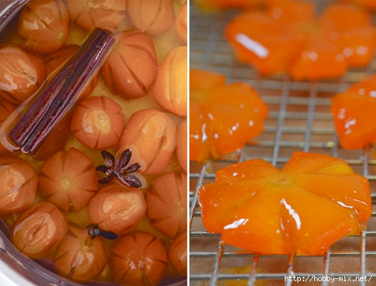 2013_02_06-kumquats4 (540x410, 133Kb)