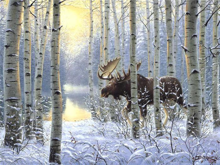 лось, лес, on the move, зима, живопись, снег, животные, Derk hansen HD обои на рабочий стол.