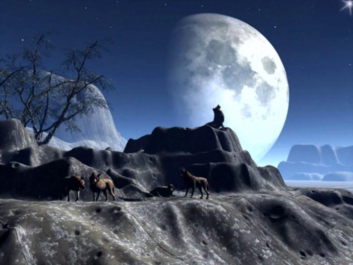 6536333_Moon (700x525, 244Kb)