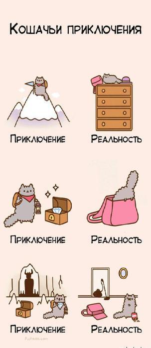 кошки. (303x700, 28Kb)