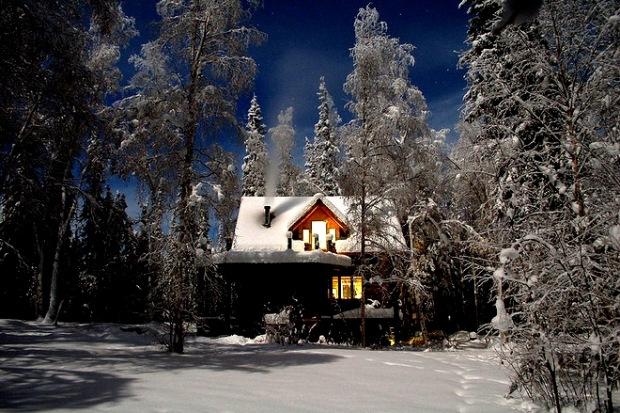 В зимнем лесу 9 (620x413, 132Kb)