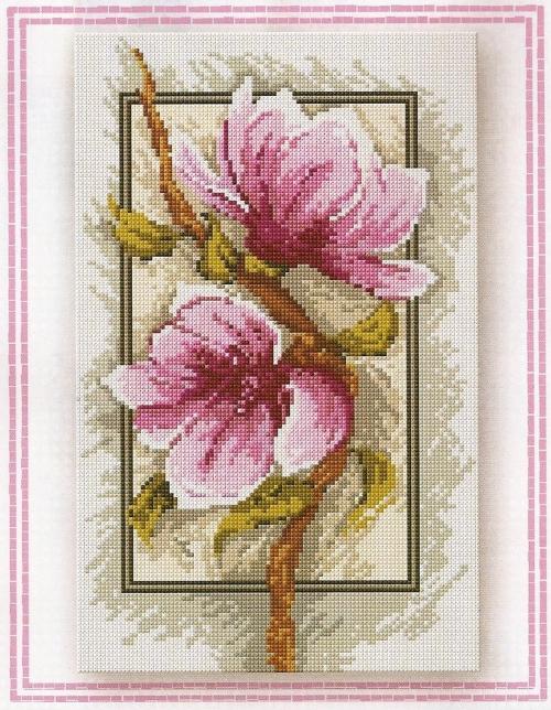 4152860_magnoliya500x644