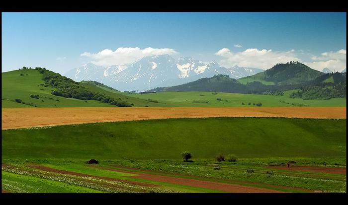 мир в фотографии (62) (700x413, 36Kb)