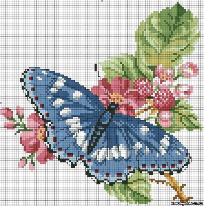 Вышивка крестом бабочки.