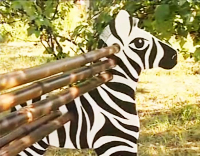zebra skameika (700x547, 139Kb)