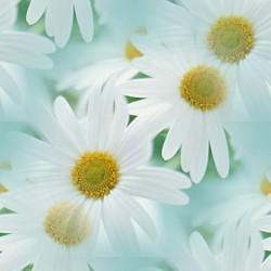 flor (36) (250x250, 13Kb)