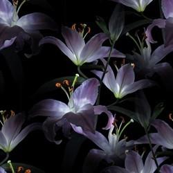 flor (49) (250x250, 18Kb)