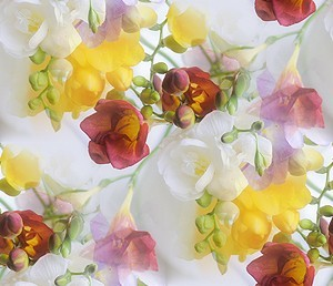 flor (72) (300x258, 27Kb)