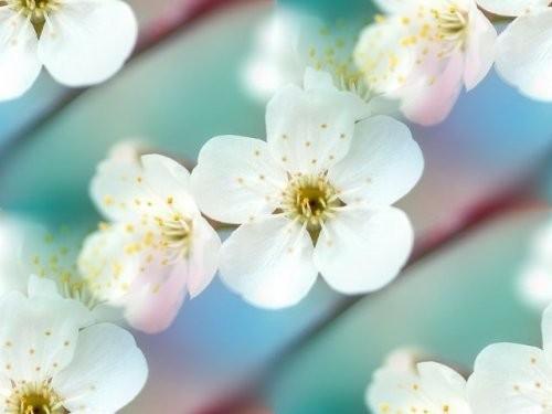 flor (137) (500x375, 28Kb)