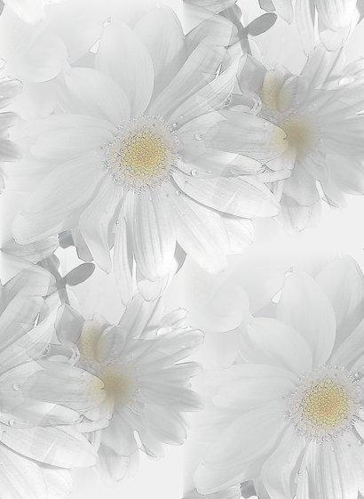 flor (89) (410x561, 32Kb)
