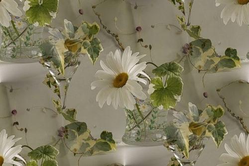 flor (123) (500x334, 46Kb)