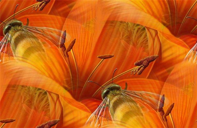 flor (186) (640x417, 54Kb)