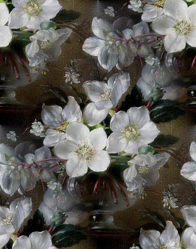 flor (85) (393x500, 72Kb)