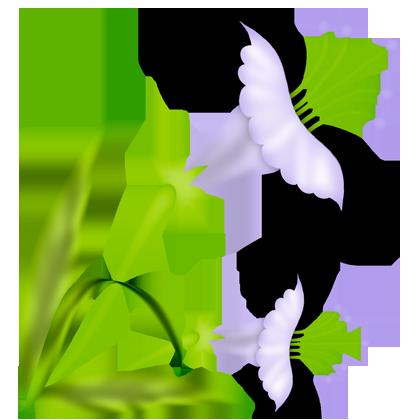 flor (95) (420x420, 100Kb)