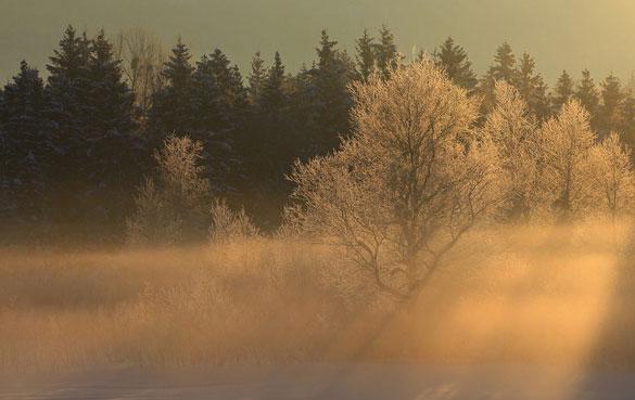 зимнее утро/4685888_ytro1 (585x369, 42Kb)